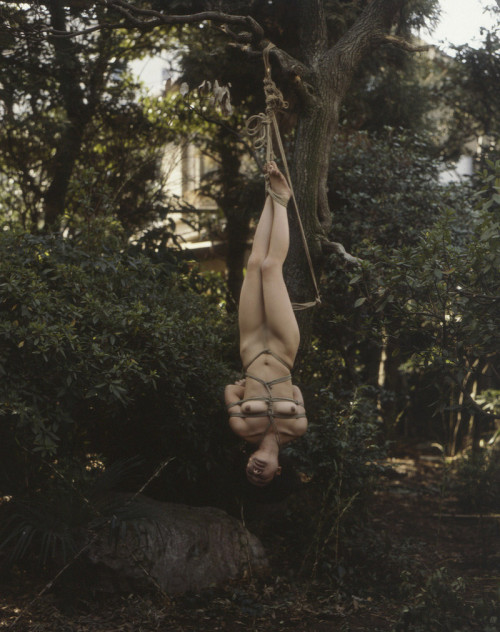 """【SM宙吊り】一歩間違えたら首が絞まっちゃいそうな外人ネキ""""宙吊り縛り""""のエロ画像・13枚目"""